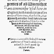 Title Page Wine Book, 1568 Poster