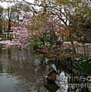 Tivoli Lake In Spring Poster