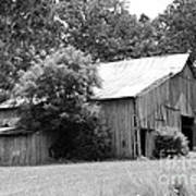barn in Kentucky no 10 Poster