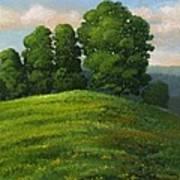 Toboggan Hill Poster