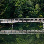 Tolmie Bridge Poster