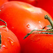Tomatoes. Poster