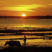 Tonle Sap Sunrise 01 Poster