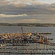 Torquay Panorama Poster