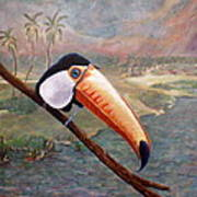 Toucan On A Limb Poster