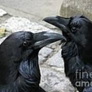 Tower Ravens Poster