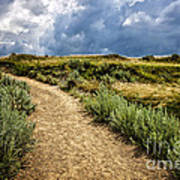 Trail In Badlands In Alberta Canada Poster