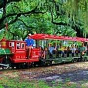 Train - New Orleans City Park Poster