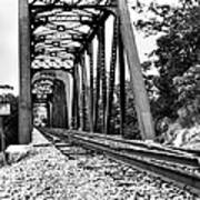 Train Trestle In B/w Poster