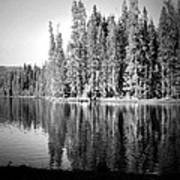 Tranquil Reflection In B And W Poster
