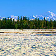 Trapper Creek And Mount Mckinley, Alaska Poster