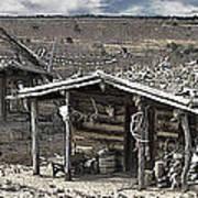 Trapper Dan's Log Cabins Poster