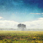 Tree And Meadow Poster