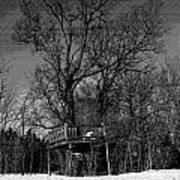 Tree House In Black And White Poster