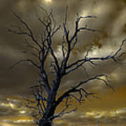 Tree In A Storm Poster