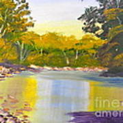 Tree Lined River Poster