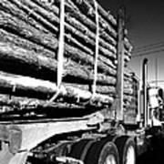 Tree Logger Poster