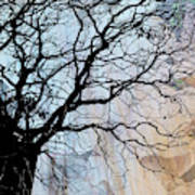 Tree Skeleton Layer Over Opaque Image Poster