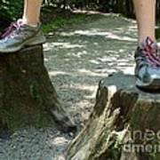 Tree Stump Stilts Poster