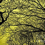 Trees Abstarct Yellow Poster