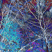 Trees Alive With Color Poster