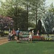 St. Louis Botanical Garden Trees Poster