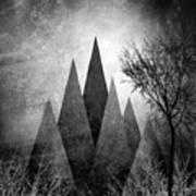 Trees V I I I Poster