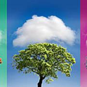 Treetypch Poster