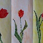 Trio Of  Red Tulips Poster
