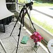 Tripod And Roses On Floor Poster
