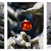 Triptych - Christmas Forest - Featured 3 Poster