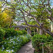 Tropical Garden. Mauritius Poster