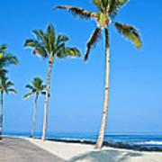 Tropical Island Beach And Sidewalk Art Prints Poster