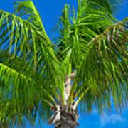 Tropical Palm Portrait Poster