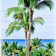Tropical Palm Trees In Hawaii Poster
