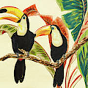 Tropical Toucans I Poster