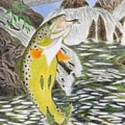 Trout Stream In May Poster by Gerald Strine
