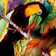 Tu Can Toucan Poster