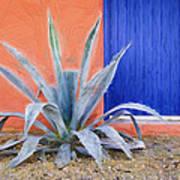 Tucson Barrio Blue Door Painterly Effect Poster