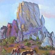 Tucson Butte With Two Coyotes Poster