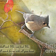 Tuffted Titmouse With Verse Poster