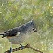 Tufted Titmouse With Decorations Poster