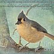 Tufted Titmouse With Verse IIi Poster
