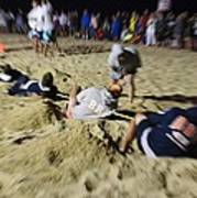 Mid-atlantic Lifeguard Competition - Tug Of War  Poster