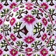 Tulip Kaleidoscope Under Glass Poster
