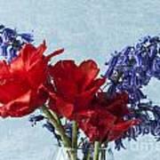 Tulip Macro 2 Poster