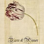 Tulip - Vivre Et Aimer S02t03tr Poster