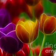 Tulips-7060-fractal Poster