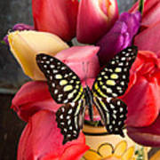 Tulips And Butterflies Poster