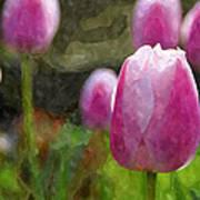 Tulips In Digital Watercolor Poster